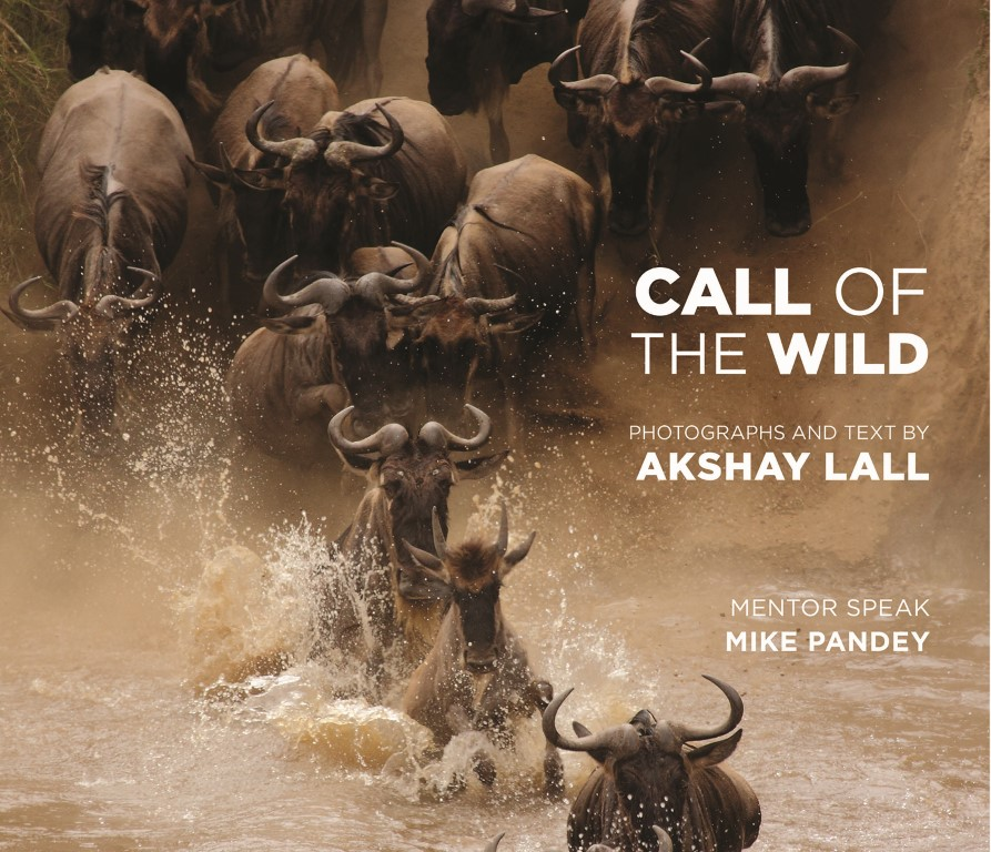 Call of the Wild - Front cover only (Medium)